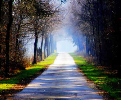jalan cahaya