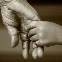 hak orang tua