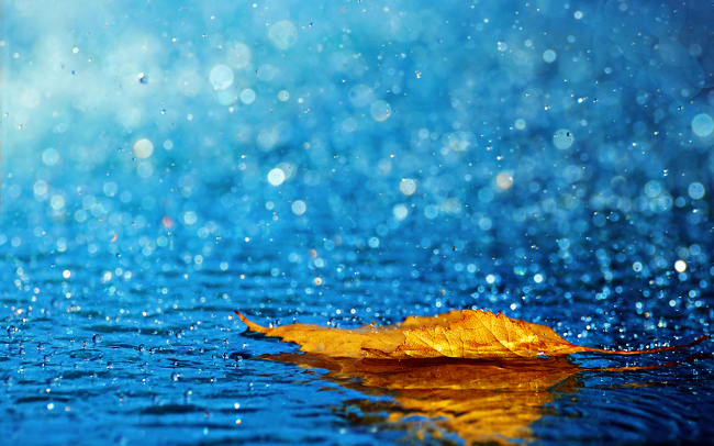 Air hujan bisa menyembuhkan