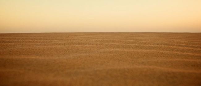 kisah-heroik-para-sahabat-singa-singa-padang-pasir